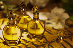 Roberto Cavalli: Signature for Women and Uomo for Men