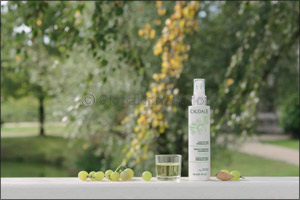 Caudalie The Cleansing Collection